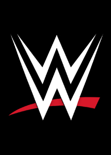 World Wrestling Entertainment Titles